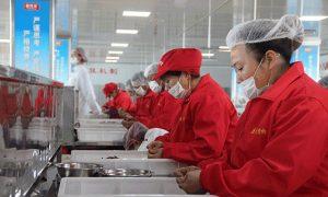 槟榔制作女工