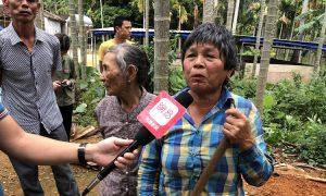 海南槟榔种植户