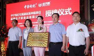 中宁枸杞可溯源种植单位