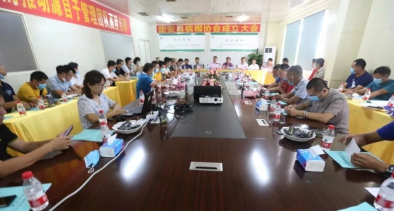 安县槟榔协会成立大会