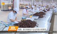 湘潭槟榔生产企业风险分组管理
